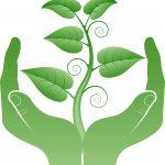 Green Hands Growing