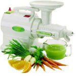 GS 2000 Greenstar Juicer