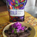 Raw Chocolate Chia Brownies