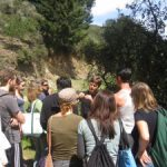 Wild Walk & Educational Talk and Spring Water Harvesting